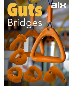 Guts Bridges