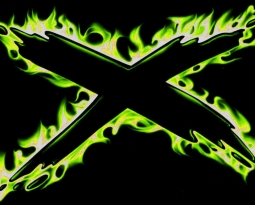 The X.